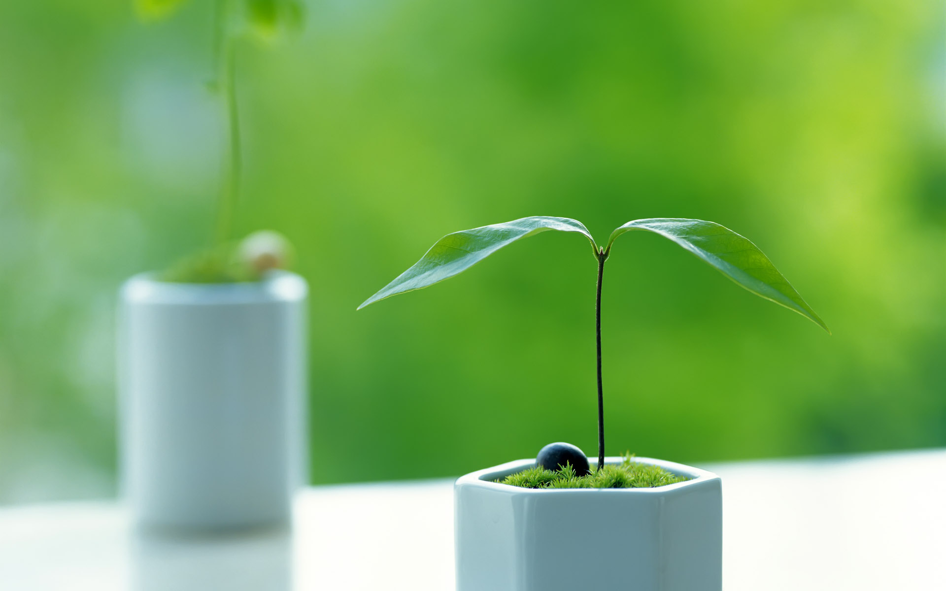 We help you grow your business